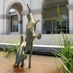 27. Platypus Sculpture, 101 Payneham Road, St Peters