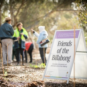 Friends of the Billabong Sign