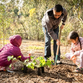 Billabong gardening kids