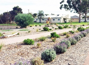 Syd Jones Reserve